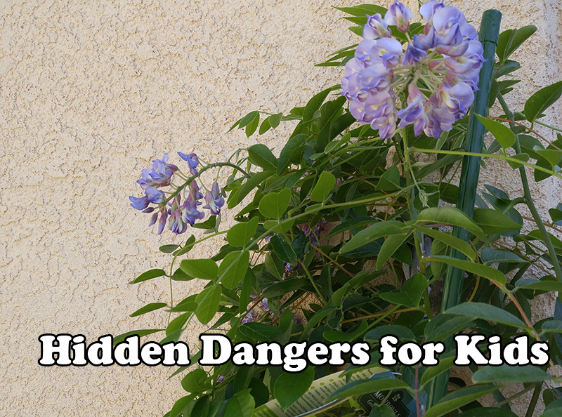 Hidden Dangers for Kids