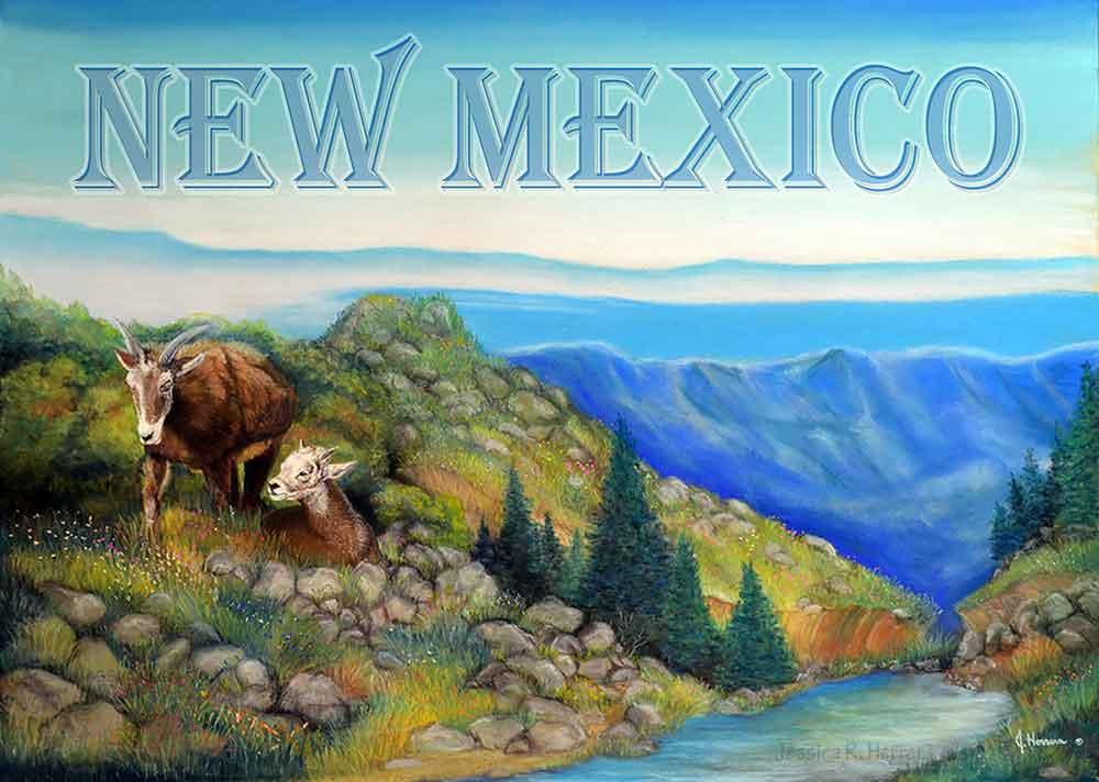 Greatest New Mexico Mountain Sheep Postcard | Jessica R. Herrera's Books  CB78