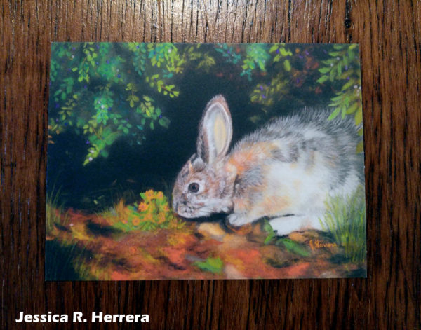 Berries-for-Brunch-Postcard